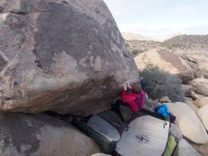 jill did this line called frozen mound, v1 or 2?