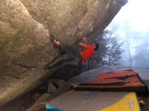 The actual start of Reform, v8.
